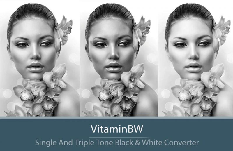 VitaminBW Black & White Converter - Example of Triple Tone Conversion