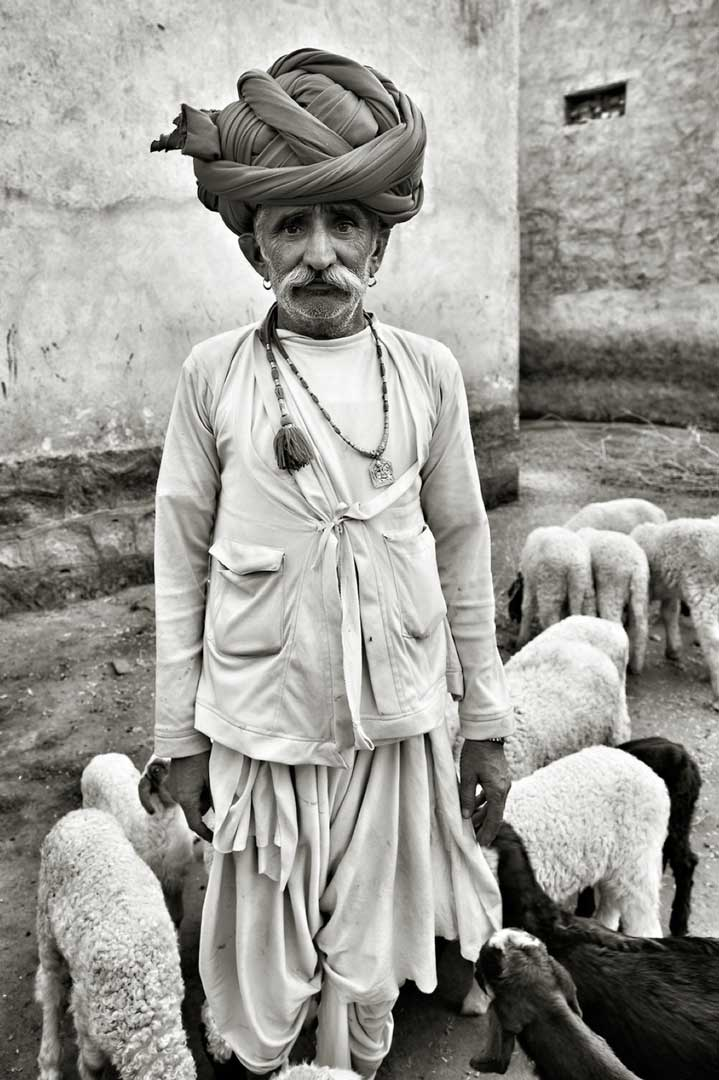 Sheperd. fom the Rajashtan Portfolio by Shari Hartbauer